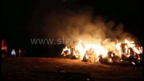 Zeci de oi au ars de vii la o stână din Vetrișoaia