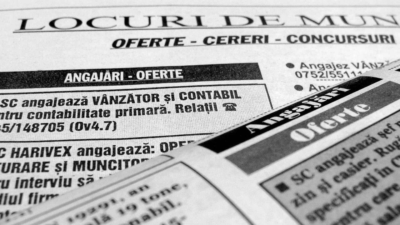 393 de locuri de muncă în Vaslui, Bârlad și Huși