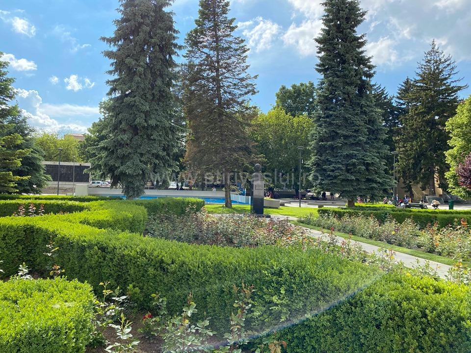 Lucrări de combatere a țânțarilor pe raza municipiului Vaslui