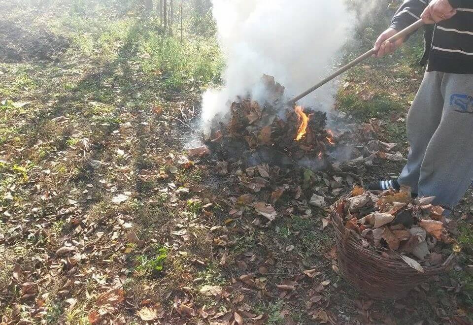 Arderea frunzelor aduce amenzi de până la 20.000 de lei
