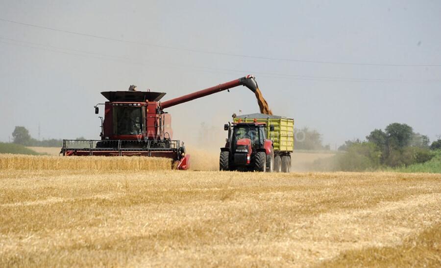 Recoltarea cerealelor păioase și a rapiței, aproape de final