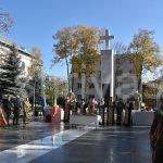Ziua armatei române, marcată la Vaslui!